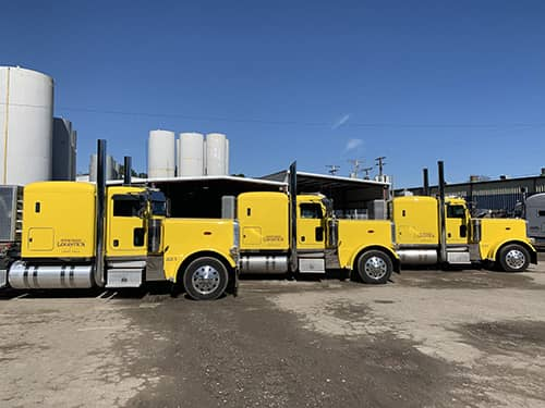 Trio of yellow Stacked Logistics trucks